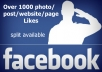 provide 1000 facebook likes for photos or posts