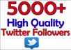 add you 5000 twitter staying followers with in 24hrs
