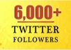 Provide You 6,000+ Real/Human/Unique/Active Twitter Followers 100% Safely.