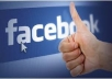 Provide for you 1000+ Genuine FACEBOOK LIKES, Lasting, 100% Ensured