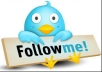 rank your twitter account to 1000 or 1500 followers within two days