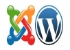 help modify or improve your wordpress or joomla site