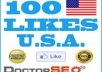 GIVE YOU 100 REAL USA FACEBOOK FANS PAGES OR PHOTO OR POST LIKES WITH PERMANENTLY