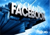 promote to 300,000 facebook fans, 250, 000 network sites and 10 social bookmark