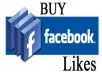give you 3000+ high quality facebook fanpage likes