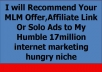 recommend Your MLM Offer,Affiliate Link Or Solo Ads to My Humble 17million list