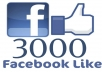 give 3000+ facebook likes