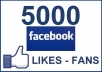 give 5000+ facebookl ikes