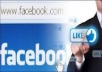 give you 666++ guarenteed facebook likes to your facebook fanpage in less than 24 hours