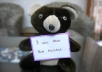 make my teddy hold a sign or message for you