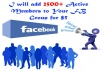 give 3000 Active Member To Your FB Group With in a day