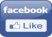 I will give you 300+ REAL Facebook Fans/Likes for $5