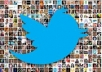 provide for you checked 1000+ true twitter devotees not fake