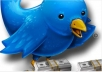 teach you how to make 10,000 Dollars monthly with your brand new Twitter account