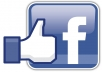 give to you 1500 real facebook fanpage photo,status and video likes