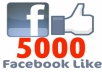 give you USA 5000 Permanent Facebook Website Likes - Not for fan page