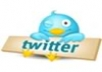 give you verified 900+ real twitter followers not fake