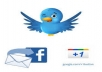 give you 65 Facebook likes,35 Twitter Tweets & 35 Google plus