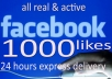 give plus Facebook 1,000 Fanpage likes
