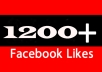 deliver 1200+ Bonus Real Facebook Fan Page Likes