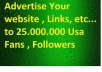 tweet your website to 2500000 Facebook fans 90000 twitter followers for traffic