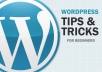 Give You 101 Wordpress Tips And Tricks