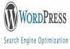 optimize your wordpress website using seo tricks