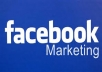 Promote your any URL/Link over 10,00000+ active world wide facebook Page Members with traffic proof