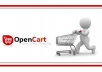 create a Complete Ecommerce Opencart
