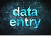 do data entry and word processing tasks