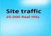 send 20000 traffic views from my site