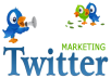 i will teach you how to get unlimited real permanent twitter followers daily