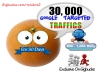 Drive 30,000 Real Google Search Targeted  TRAFFIC 800 to 1,500 Daily To your Website For 30 Day
