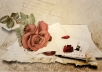 write a personalized love letter to your significant other