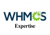 install,setup everything in WHMCS and upgrade