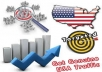 deliver 2,564 USA website traffic to your website