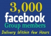 ★ Every members are Real Active & Real Human facebook users 
