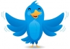 make you a tailored Twitter account with 1000 followers