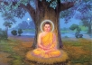 send you 100 LORD BUDDHA image collection
