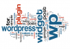 deliver you any WordPress service