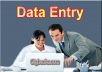 do any type of data entry job, 3 hrs