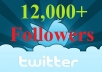 add 12000+ twitter followers for your business