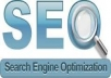 give you the SEO Holy grail of Instruction guides