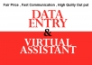do Data Entry and be your Virtual Assistant upto 5 Hours