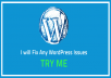 fix Any WordPress Issues of your website