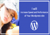 increase Speed and performance of Your Wordpress site