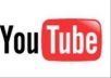 give you 300 likes & 300 views on your youtube vedio