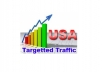 drive daily 600 to 800 USA visitors for one month