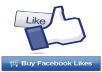 give you 300 real Facebook Likes for you photo or status or page