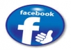give you 800 facebook fanpage likes only